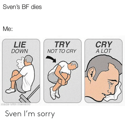 Sorry, Down, and Cry: Sven's BF dies  Me:  CRY  A LOT  LIE  DOWN  TRY  NOT TO CRY  made with mematic Sven I'm sorry