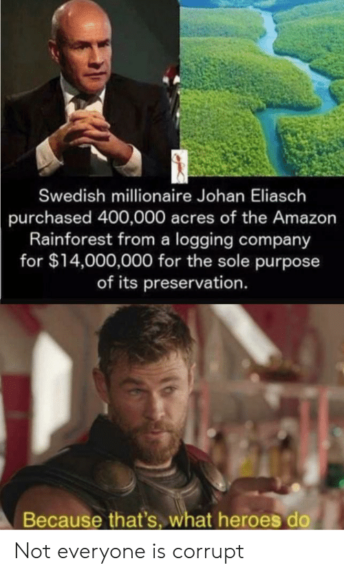 Amazon, Heroes, and Swedish: Swedish millionaire Johan Eliasch  purchased 400,000 acres of the Amazon  Rainforest from a logging company  for $14,000,000 for the sole purpose  of its preservation.  Because that's, what heroes do Not everyone is corrupt