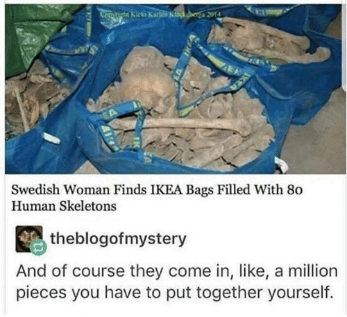 Ikea, Memes, and Swedish: Swedish Woman Finds IKEA Bags Filled With 80  Human Skeletons  theblogofmystery  And of course they come in, like, a million  pieces you have to put together yourself.