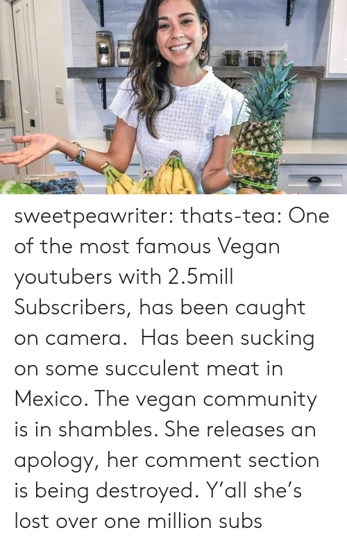 Community, Tumblr, and Vegan: sweetpeawriter: thats-tea:    One of the most famous Vegan youtubers with 2.5mill Subscribers, has been caught on camera. Has been sucking on some succulent meat in Mexico. The vegan community is in shambles. She releases an apology, her comment section is being destroyed.  Y'all she's lost over one million subs
