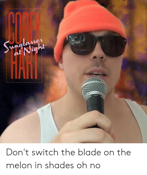 Blade, Switch, and Melon: Swnglasses  at Night Don't switch the blade on the melon in shades oh no