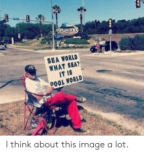Image, Sea World, and World: Swor  SEA WORLD  WHAT SEA?  IT IS  DOOL WORLD I think about this image a lot.