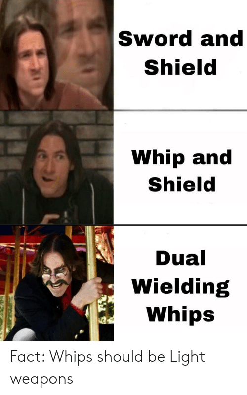 Sword and Shield Whip and Shield Dual Wielding Whips Fact Whips
