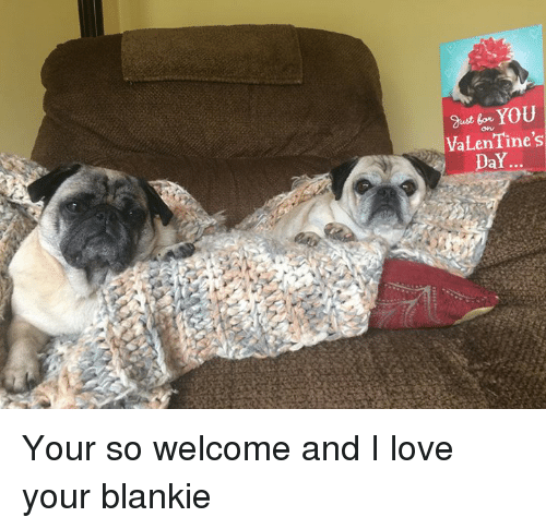 Love, Memes, and Valentine's Day: swt in YOU  VaLenTine's  DaY... Your so welcome and I love your blankie