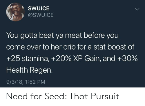 Come Over, Thot, and Boost: SWUICE  @SWUICE  You gotta beat ya meat before you  come over to her crib for a stat boost of  +25 stamina, +20% XP Gain, and +30%  Health Regen.  9/3/18, 1:52 PM Need for Seed: Thot Pursuit