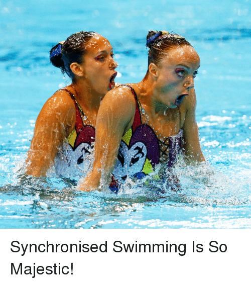 synchronised swimming is so majestic 6803031 ✅ 25 best memes about synchronised swimming synchronised