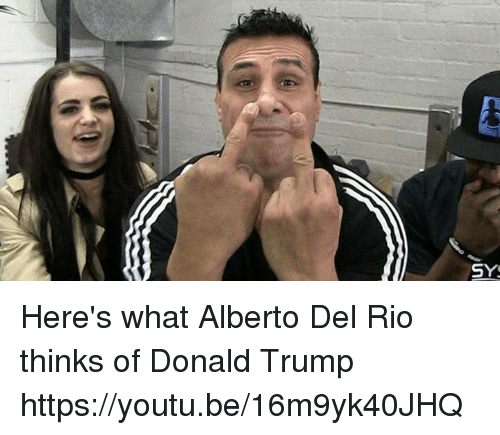 sys heres what alberto del rio thinks of donald trump 8552955 ✅ 25 best memes about alberto del rio alberto del rio memes,Alberto Memes