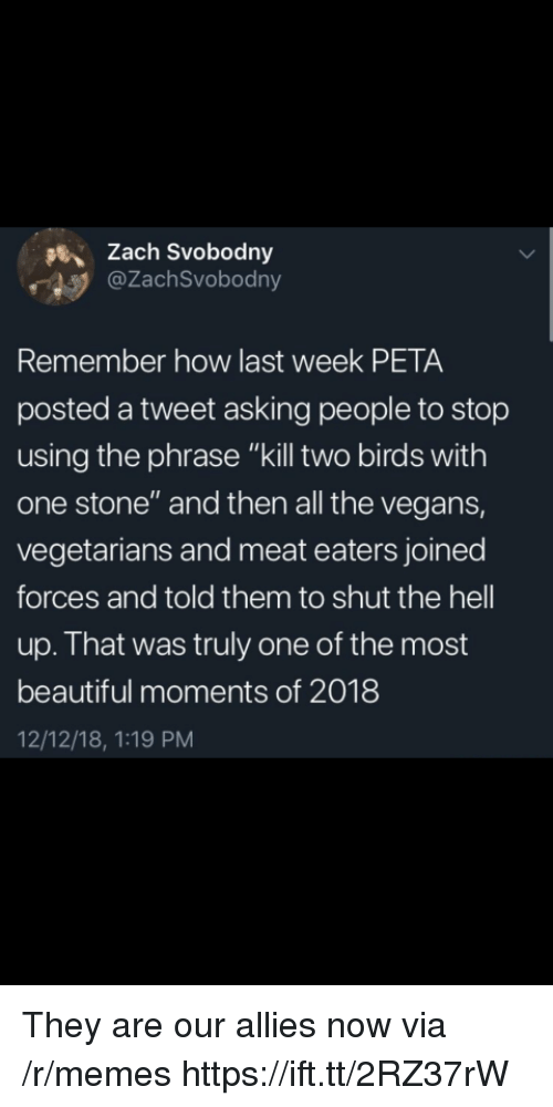 """Beautiful, Memes, and Peta: sZach Svobodny  @ZachSvobodny  Remember how last week PETA  posted a tweet asking people to stop  using the phrase """"kill two birds with  one stone"""" and then all the vegans,  vegetarians and meat eaters joined  forces and told them to shut the hell  up. That was truly one of the most  beautiful moments of 2018  12/12/18, 1:19 PM They are our allies now via /r/memes https://ift.tt/2RZ37rW"""