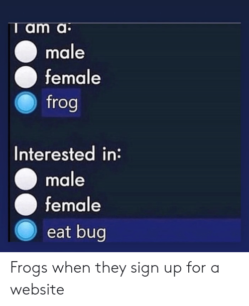 T Am a Male Female Frog Interested in Male Female Eat Bug