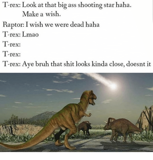 Ass, Bruh, and Lmao: T-rex: Look at that big ass shooting star haha.  Make a wish  Raptor: I wish we were dead haha  T-rex: Lmao  T-rex:  T-rex:  T-rex: Ave bruh that shit looks kinda close, doesnt it