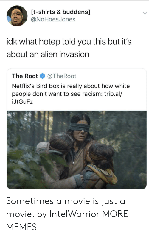 Dank, Memes, and Racism: [t-shirts & buddens]  ONoHoesJones  idk what hotep told you this but it's  about an alien invasion  The Root @TheRoot  Netflix's Bird Box is really about how white  people don't want to see racism: trib.al/  İJtGuF2 Sometimes a movie is just a movie. by IntelWarrior MORE MEMES