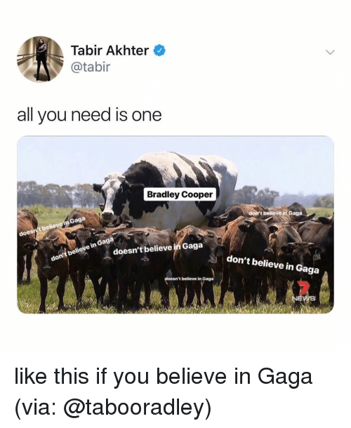 Doe, Bradley Cooper, and Relatable: Tabir Akhter  @tabir  all you need is one  Bradley Cooper  Gaga  t believe  doe  t believe in Gaga  in Gaga  believe  don  doesn't believe in Gaga  don't believe in Gaga  sn't believe in Gaga like this if you believe in Gaga (via: @tabooradley)