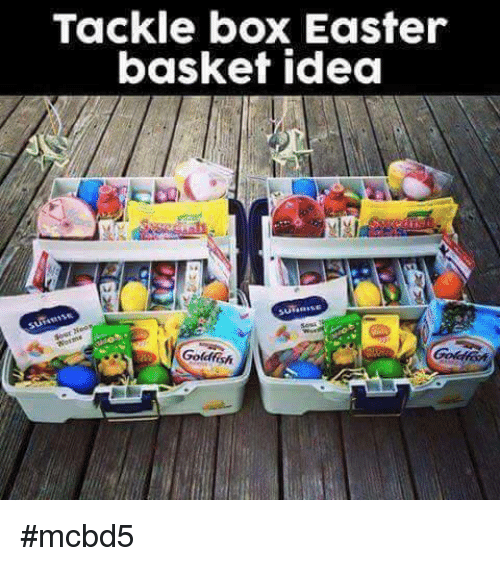 Tackle box meme wiring wiring diagrams instructions tackle box easter basket idea goldfish mcbd5 meme on negle Image collections