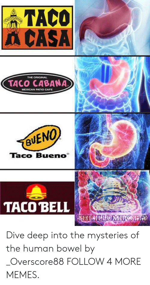 Dank, Memes, and Reddit: TACO  A CASA  THE ORIGINAL  TACO CABANA  MEXICAN PATIO CAFE  BUENO  Taco Bueno  TACO BELL  THEILLUMIPOTTY Dive deep into the mysteries of the human bowel by _Overscore88 FOLLOW 4 MORE MEMES.