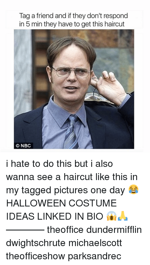 Haircut, Halloween, and Memes: Tag a friend and if they don't respond  in 5 min they have to get this haircut  NBC i hate to do this but i also wanna see a haircut like this in my tagged pictures one day 😂 HALLOWEEN COSTUME IDEAS LINKED IN BIO 😱🙏 ———— theoffice dundermifflin dwightschrute michaelscott theofficeshow parksandrec