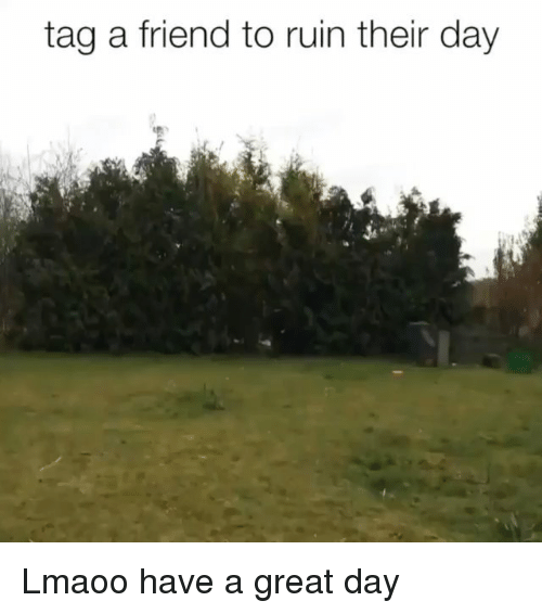 Memes, 🤖, and Friend: tag a friend to ruin their day Lmaoo have a great day
