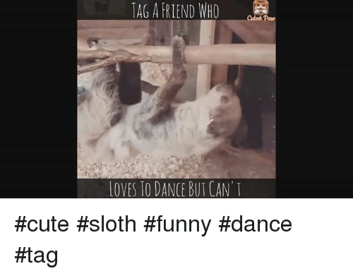Funny Can T Dance Meme : I will show you the dance of my people gifs meme and funny facts