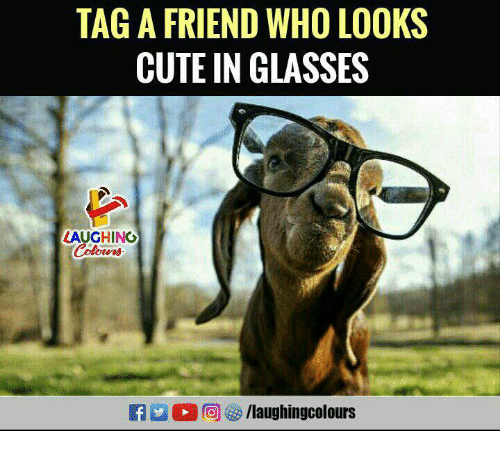 Cute, Glasses, and Indianpeoplefacebook: TAG A FRIEND WHO LOOKS  CUTE IN GLASSES  LAUGHING