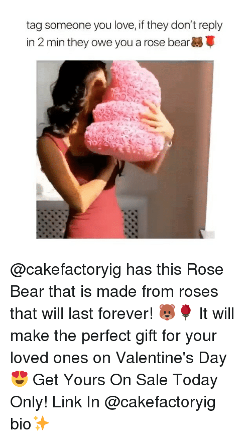 Funny, Love, and Valentine's Day: tag someone you love, if they don't reply  in 2 min they owe you a rose bear @cakefactoryig has this Rose Bear that is made from roses that will last forever! 🐻🌹 It will make the perfect gift for your loved ones on Valentine's Day 😍 Get Yours On Sale Today Only! Link In @cakefactoryig bio✨