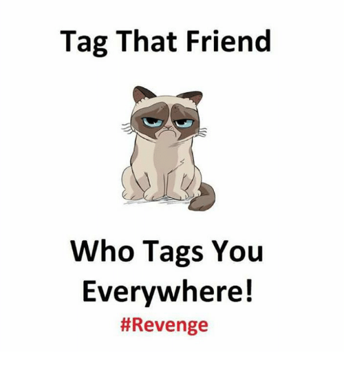 Memes, Revenge, and 🤖: Tag That Friend  Who Tags You  Everywhere!