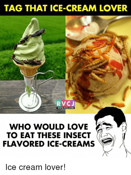 Love, Memes, and Ice Cream: TAG THAT ICE-CREAM LOVER  RVCJ  wwW.RVCJ.COM  WHO WOULD LOVE  TO EAT THESE INSECT  FLAVORED ICE-CREAMS Ice cream lover!