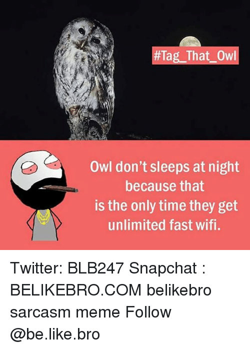 Be Like, Meme, and Memes:  #Tag-That-Owl  Owl don't sleeps at night  because that  is the only time they get  unlimited fast wifi. Twitter: BLB247 Snapchat : BELIKEBRO.COM belikebro sarcasm meme Follow @be.like.bro