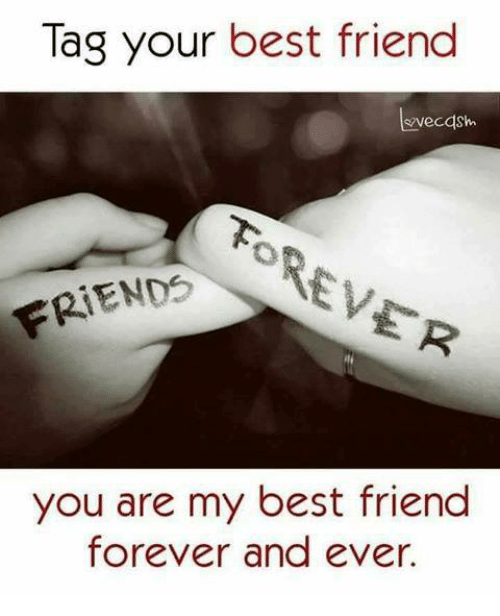 Tag Your Best Friend Vecash Friends You Are My Best Friend Forever
