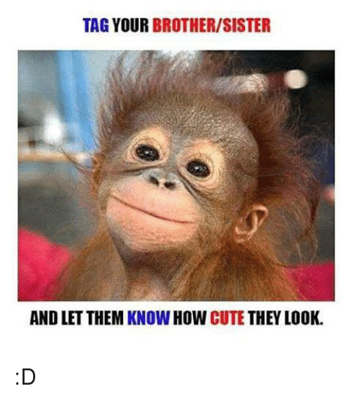 Tag Your Brothersister And Let Them Know How Cute They Look D Cute