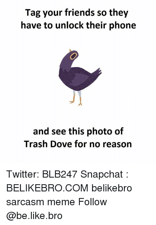 Be Like, Dove, and Memes: Tag your friends so they  have to unlock their phone  and see this photo of  Trash Dove for no reason Twitter: BLB247 Snapchat : BELIKEBRO.COM belikebro sarcasm meme Follow @be.like.bro