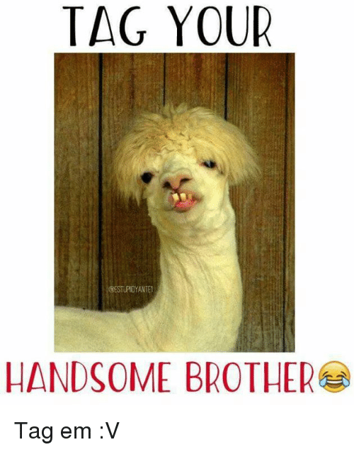 Funny Memes For Your Brother : Tag your handsome brother em v meme on me