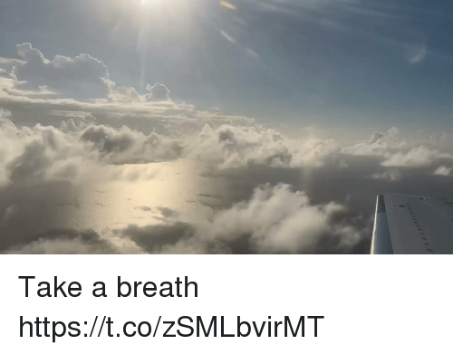 Memes, 🤖, and Breath: Take a breath https://t.co/zSMLbvirMT