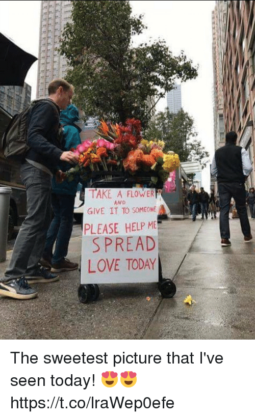 Love, Memes, and Flower: TAKE A FLOWER  GIVE IT TO SOMEONE  PLEASE HELP M  SPREAD  LOVE TODAY  AND The sweetest picture that I've seen today! 😍😍 https://t.co/lraWep0efe