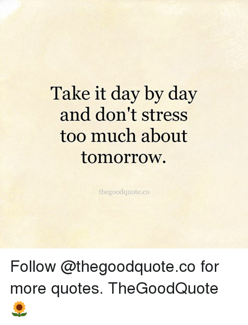 Day By Day Quotes Take It Day by Day and Don't Stress Too Much About Tomorrow  Day By Day Quotes