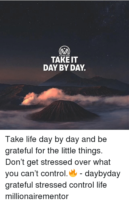 Life, Memes, and Control: TAKE IT  DAY BY DAY Take life day by day and be grateful for the little things. Don't get stressed over what you can't control.🔥 - daybyday grateful stressed control life millionairementor
