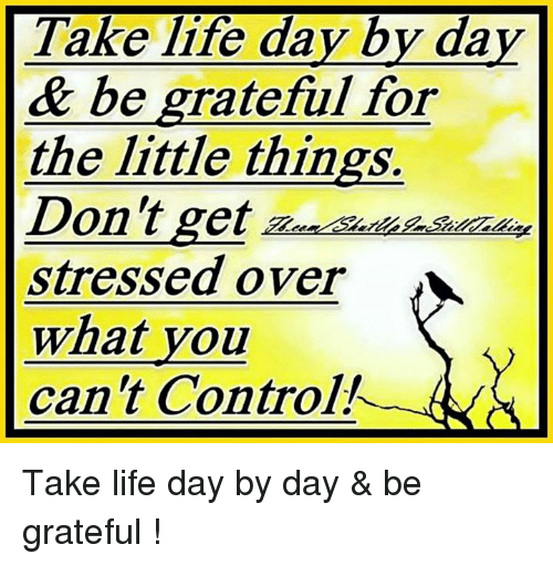 take life day by day be grateful for the 6006474 ✅ 25 best memes about memes memes, meme generator