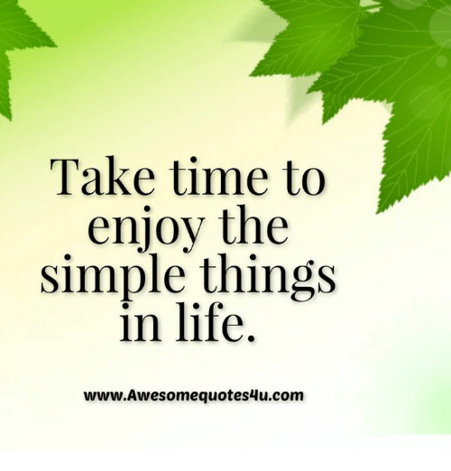 Take Time To Enjoy The Simple Things In Life Wwwawesomequotes4ucom
