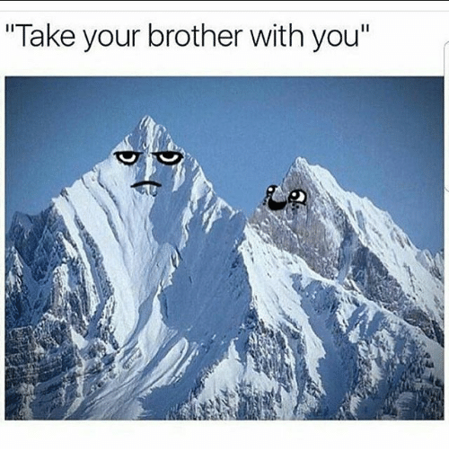 """Memes, 🤖, and Brother: """"Take your brother with you"""