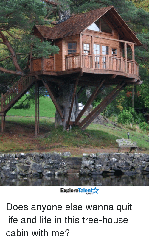 Life, Memes, and House: Talent  Explore Does anyone else wanna quit life and life in this tree-house cabin with me?