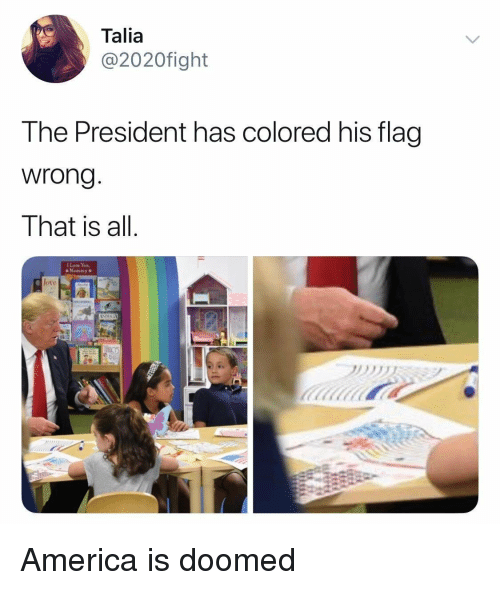 America, Love, and President: Talia  @2020fight  The President has colored his flag  wrong  That is all  I Love Yow,  o Mommy  t0  เฝ้ America is doomed