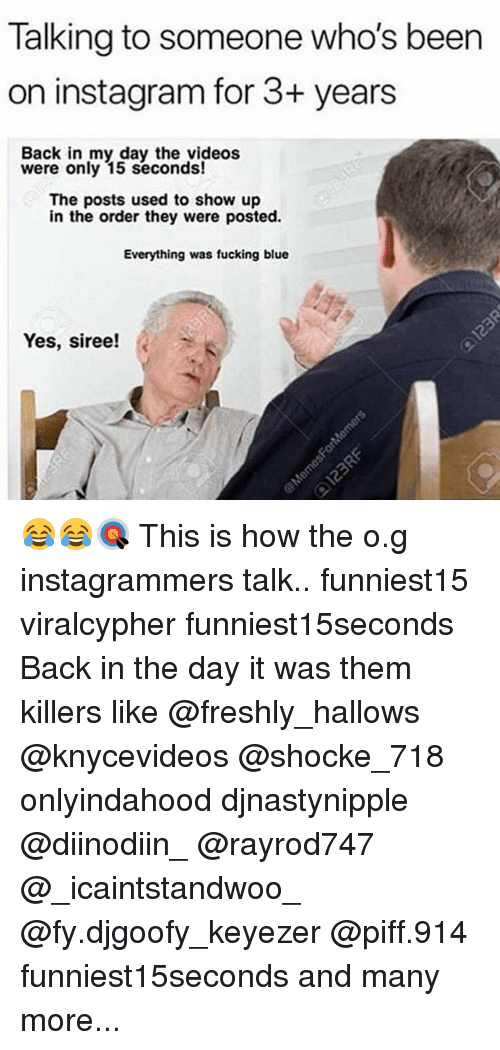 Fucking, Funny, and Instagram: Talking to someone who's beern  on instagram for 3+ years  Back in my day the videos  were only 15 seconds!  The posts used to show up  in the order they were posted.  Everything was fucking blue  Yes, siree! k 😂😂🎯 This is how the o.g instagrammers talk.. funniest15 viralcypher funniest15seconds Back in the day it was them killers like @freshly_hallows @knycevideos @shocke_718 onlyindahood djnastynipple @diinodiin_ @rayrod747 @_icaintstandwoo_ @fy.djgoofy_keyezer @piff.914 funniest15seconds and many more...