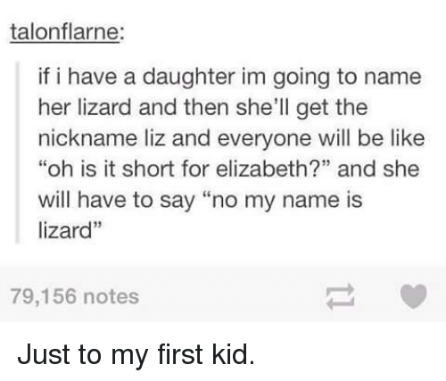 Talonflarne if I Have a Daughter Im Going to Name Her Lizard