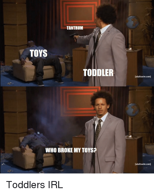 Reddit, Toys, and Irl: TANTRUM  TOYS  TODDLER  [adultswim.com]  WHO BROKE MY TOYS?  [adultswim.com] Toddlers IRL