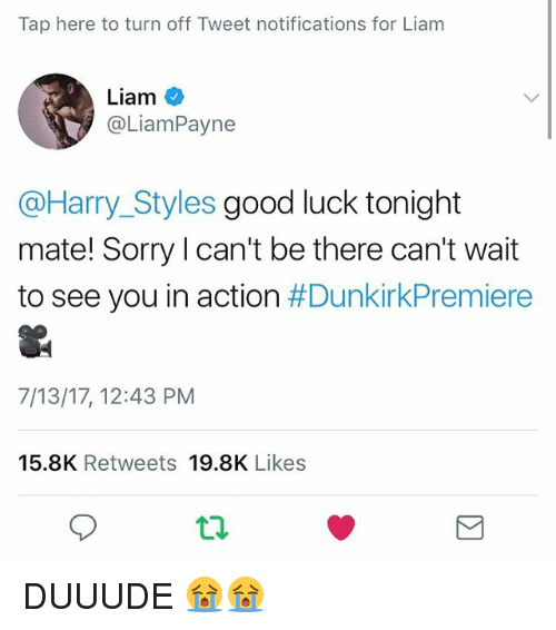 Memes, Sorry, and Good: Tap here to turn off Tweet notifications for Liam  Liam  @LiamPayne  @Harry_Styles good luck tonight  mate! Sorry l can't be there can't wait  to see you in action #DunkirkPremiere  7/13/17, 12:43 PM  15.8K Retweets 19.8K Likes  9 DUUUDE 😭😭