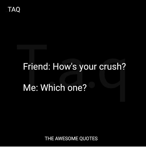 TAQ Friend How's Your Crush? Me Which One? THE AWESOME QUOTES