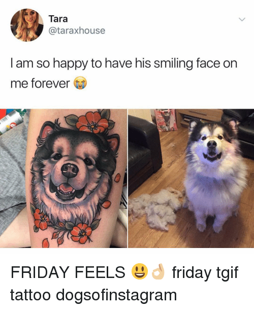 Friday, Memes, and Tgif: Tara  @taraxhouse  I am so happy to have his smiling face on  me forever FRIDAY FEELS 😃👌🏼 friday tgif tattoo dogsofinstagram