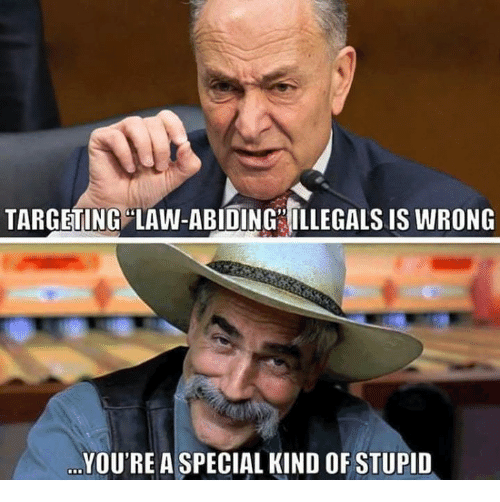 Memes, 🤖, and Law: TARGETING LAW-ABIDING ILLEGALS IS WRONG  YOU'RE A SPECIAL KIND OF STUPID