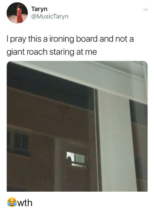 Memes, Giant, and Board: Taryn  @MusicTaryn  I pray this a ironing board and not a  giant roach staring at me 😂wth