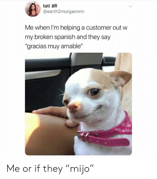 "Memes, Spanish, and 🤖: tati  @earth2morgannnn  Me when I'm helping a customer out w  my broken spanish and they say  ""gracias muy amable"" Me or if they ""mijo"""