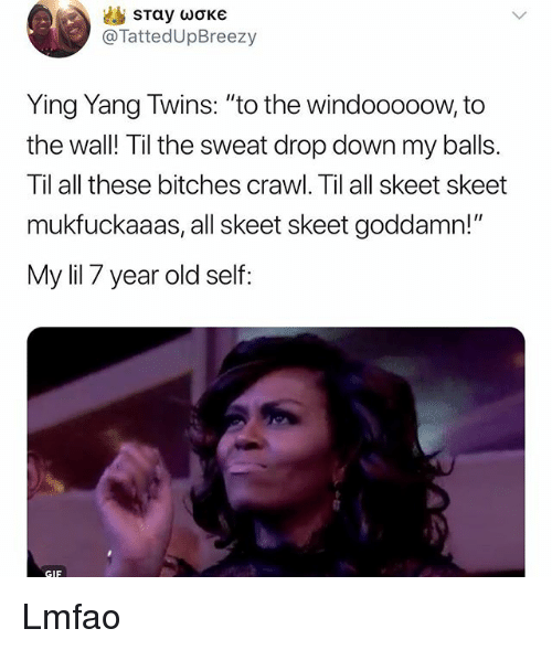"Gif, Memes, and Ying Yang Twins: @TattedUpBreezy  Ying Yang Twins: ""to the windooooow, to  the wall! Til the sweat drop down my balls.  Til all these bitches crawl. Til all skeet skeet  mukfuckaaas, all skeet skeet goddamn!""  My lil 7 year old self  GIF Lmfao"