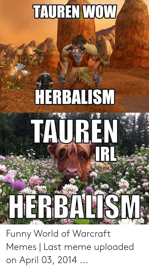 Tauren Wow Herbalism Tauren Irl Herbalism Funny World Of Warcraft